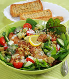 Green salad with chicken stripes Stock Photo