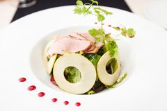 Green salad with cold veal Stock Image