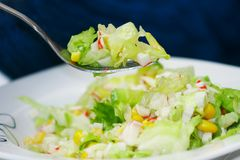 Green salad with crab meat Stock Images