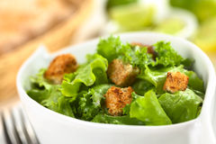 Green Salad with Croutons Royalty Free Stock Images