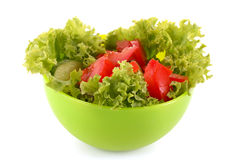 Green salad, cucumber and tomato in green plate Royalty Free Stock Photo