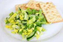 Green salad with cucumbers Stock Photos