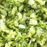 Green salad of cucumbers, lettuce, onions and parsley Royalty Free Stock Photos