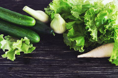 Green salad, cucumbers, radish and onion Royalty Free Stock Photos