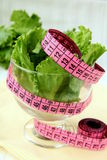 Green salad  diet with a  measuring tape Stock Photos