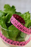 Green salad  diet with a  measuring tape Stock Photography