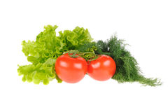Green salad, dill and tomato isolated on white Royalty Free Stock Images