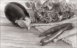 Green salad, eggplant and chili on a wooden table, black and white image. On a wooden table are vegetables: eggplant, chili and green salad in a small red royalty free stock photography