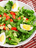 Green salad with eggs Royalty Free Stock Photos