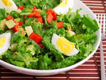 Green salad with eggs Royalty Free Stock Image