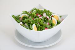 Green salad with eggs Royalty Free Stock Photo