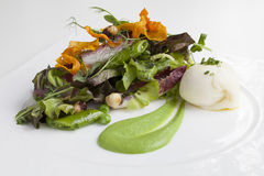 Green Salad with Fennel Puree royalty free stock image