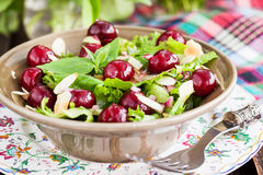 Green salad with fresh cherries Stock Photos
