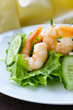 Green salad with fresh  shrimps Stock Photography