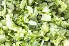 Green salad with fresh vegetables Royalty Free Stock Photos