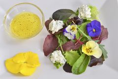 Healthy plate. Green salad with garden flowers Stock Images
