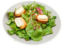 Green salad with goat cheese on plate Royalty Free Stock Photos