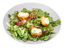 Green salad with goat cheese and toasted bread Stock Photo
