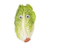 Green salad with googly eyes Stock Photography