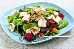 Green salad with grilled chicken royalty free stock photo