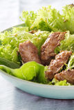 Green salad and grilled fillet of beef.JPG Stock Photography