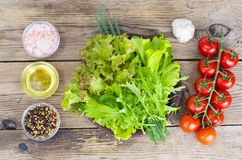 Green salad ingredients organic lettuce, cherry tomatoes, spices and olive oil on wooden background. royalty free stock image