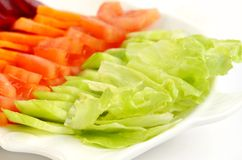 Green salad kept in a plate Royalty Free Stock Photo