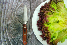 Green salad and knife. On wood royalty free stock photo