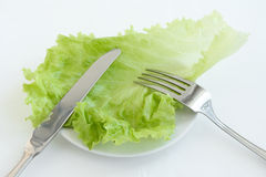Green salad leaves. With knife and fork on the plate Royalty Free Stock Photos