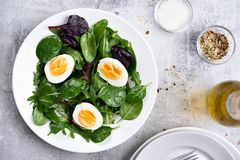 Green salad with leaves and eggs Stock Images