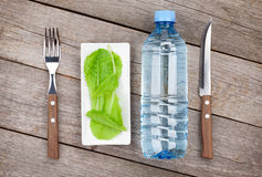 Green salad leaves and water bottle. Healthy food Stock Image