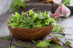 Green salad leaves in a wooden bowl Royalty Free Stock Images