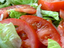 Green Salad - Lettuce And Tomatoes Royalty Free Stock Photo