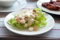 Green Salad lettuce leaves Stock Image