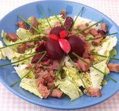Green salad with liver Stock Photography