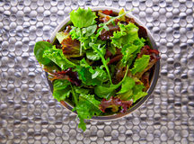 Green salad Mediterranean green and red lettucce spinach Royalty Free Stock Photos