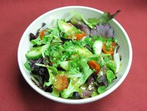 Green salad with oil dressing Royalty Free Stock Photos