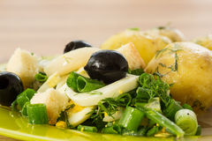 Green salad with onion and squid Royalty Free Stock Images