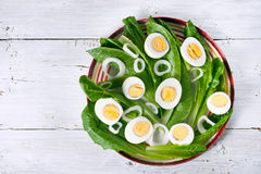 Green salad with onions and eggs on the white wooden table Royalty Free Stock Image