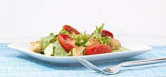 Green Salad over blue and white Stock Image
