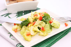 Green salad with paprika Royalty Free Stock Photos