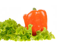 Green salad and pepper isolated Stock Photo