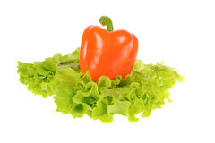 Green salad and pepper isolated on white Royalty Free Stock Photography