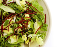 Green salad on plate Royalty Free Stock Image