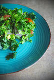 Green salad on the plate Royalty Free Stock Photography
