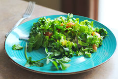Green salad on the plate Royalty Free Stock Image