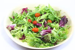 Green salad Stock Photos
