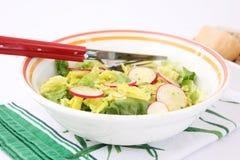 Green salad with radish Royalty Free Stock Image