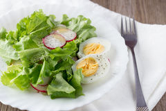 Green salad with radish and hard-boiled egg on white plate Stock Photography