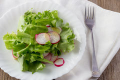 Green salad with radish and olive oil on white plate Royalty Free Stock Photography